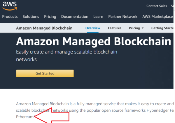 2d08599c04c851 Amazon Managed Blockchain Powered By Ethereum – AT&T And Nestlé Already On  Board